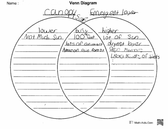Guided Reading Venn Diagram Explore Schematic Wiring Diagram